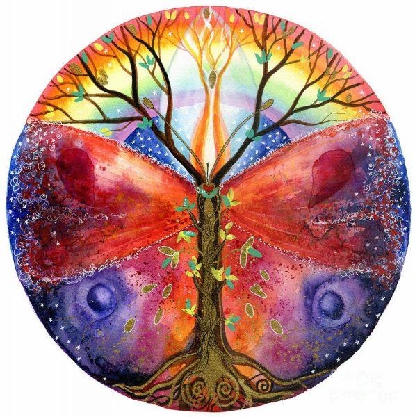 arbre-racine-papillon-yeux-lumière